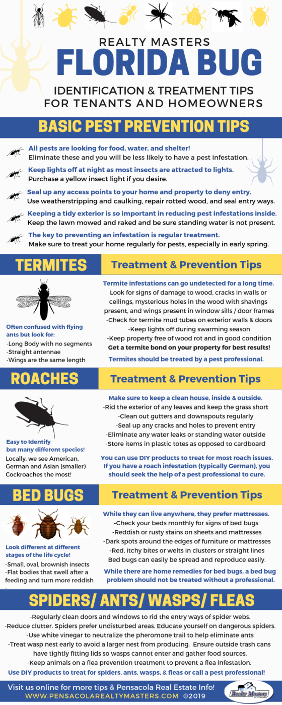 Florida Pest Control Tips
